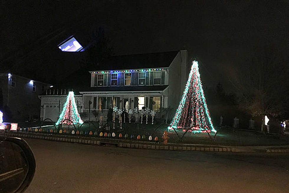 The Winner Of Our Christmas Lights Poll Is