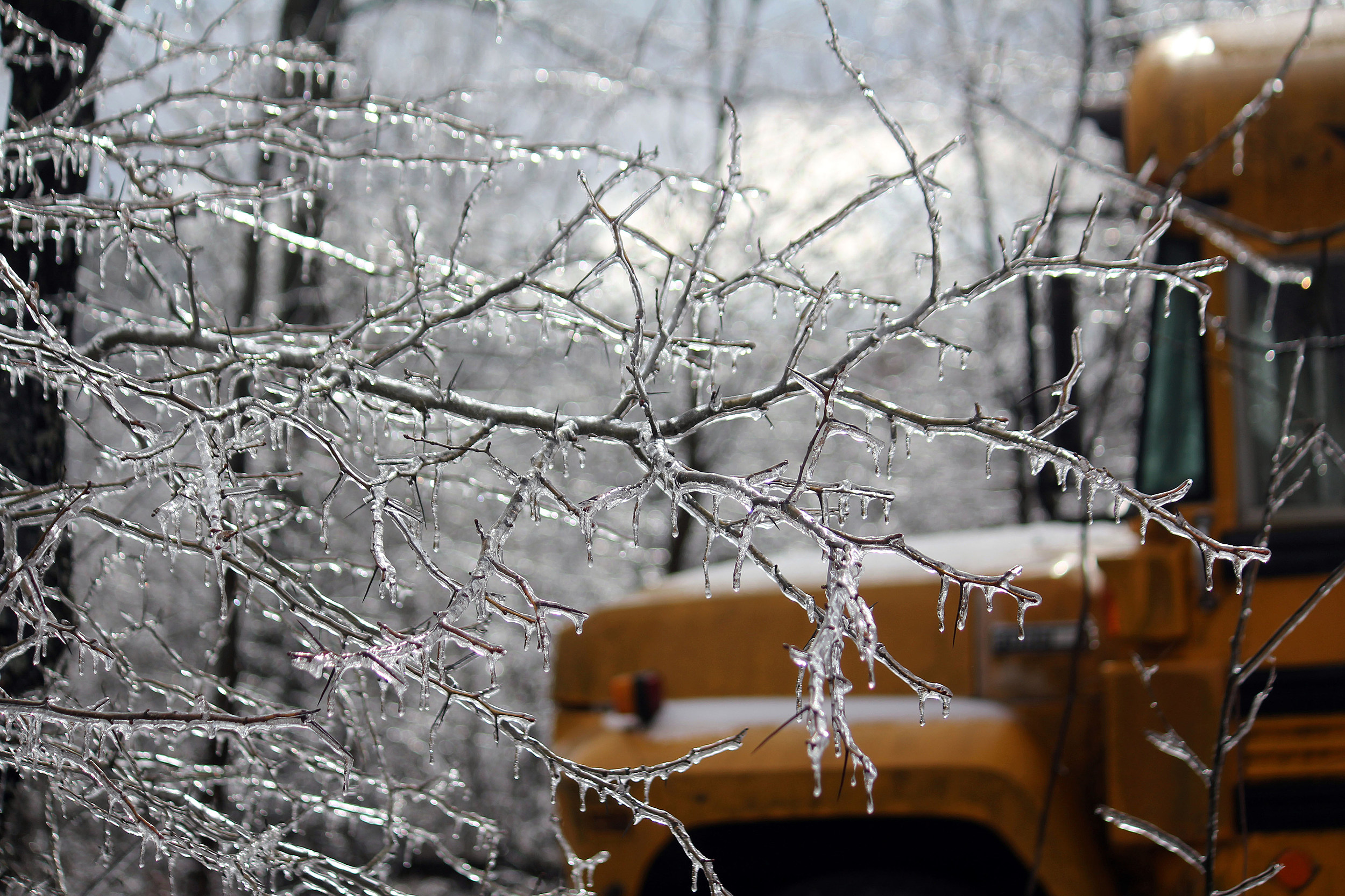 School Closings & Early Dismissals for Wednesday, February 20