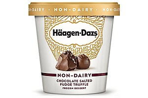 Häagen-Dazs Chocolate Salted Fudge Truffle Non-Dairy