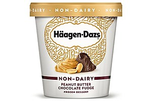 Häagen-Dazs Peanut Butter Chocolate Fudge Non-Dairy
