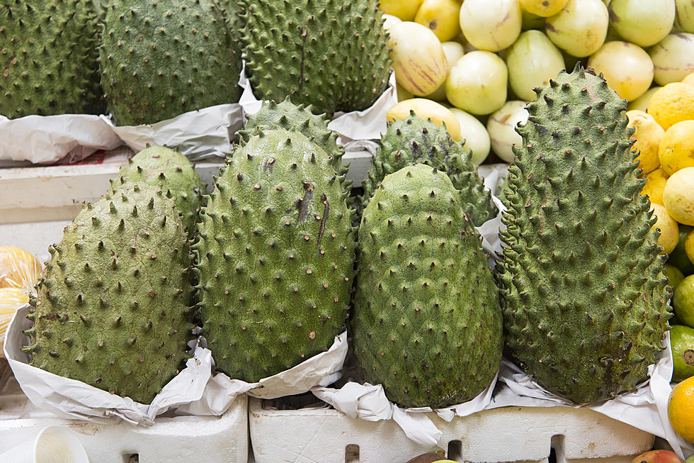 Soursop Is A Wonder Plant To Fight Infection And Inflammation