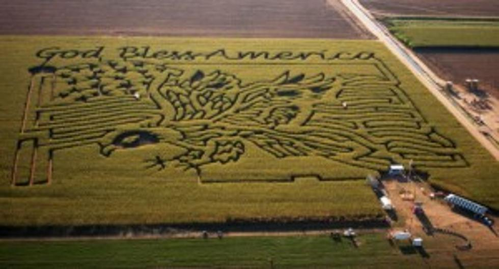Colorado Corn Mazes To Get Lost In